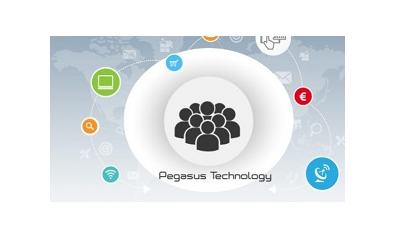 Pegasus Syllo ERP Start Up